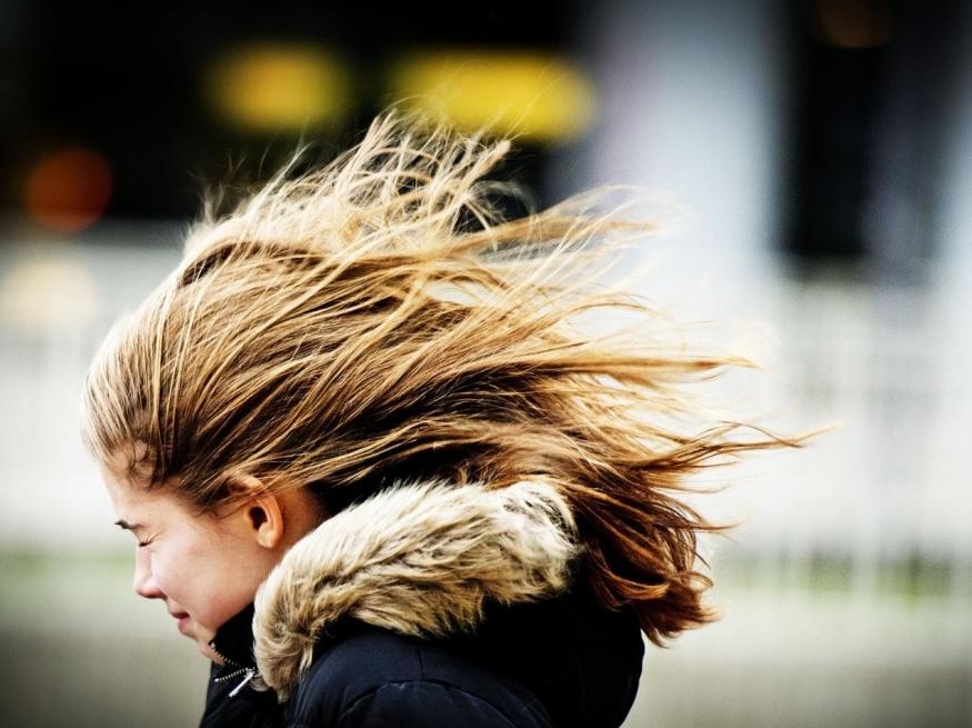 Синоптики предупредили обусилении ветра наАлтае до27 метров засекунду