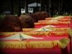 Тульские поисковики разыскивают родственников погибшего красноармейца